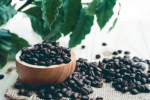 コーヒー豆の焙煎度8種類と味の変化|焙煎度合いごとにおすすめな豆も紹介